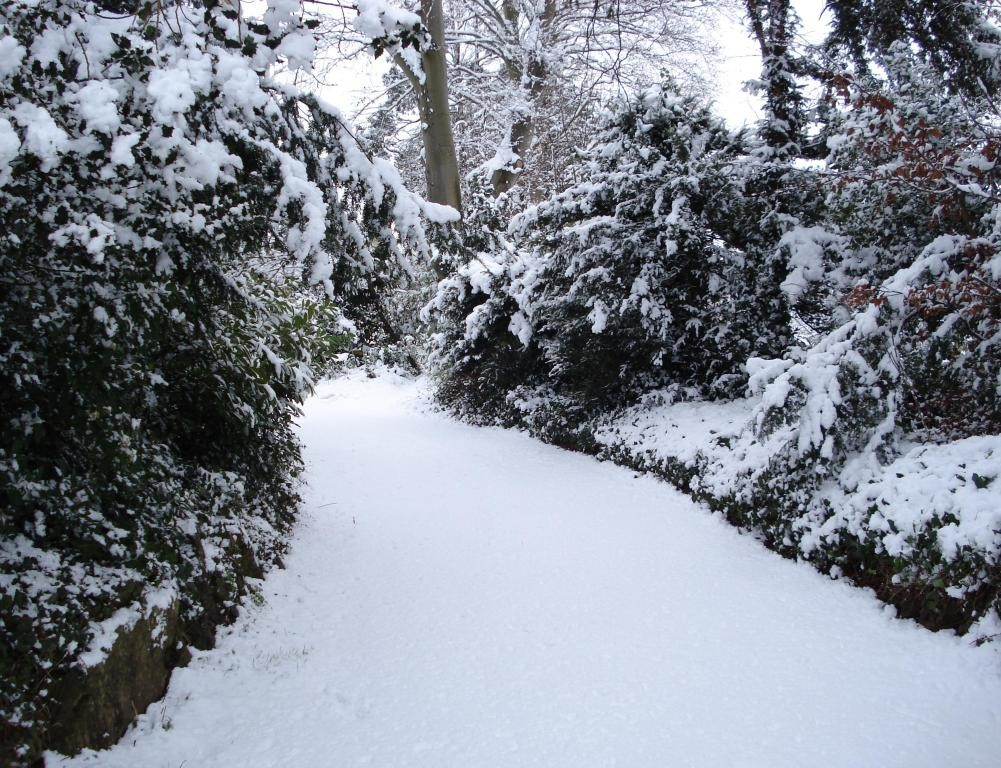 Snowy lane in Trowbridge (2).JPG