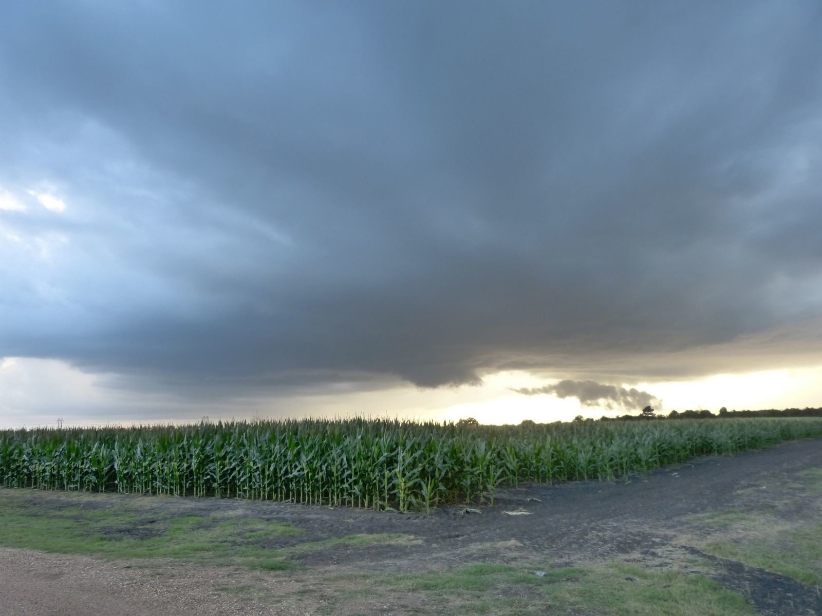 Rotating wall cloud forming across a field of corn west of Houston