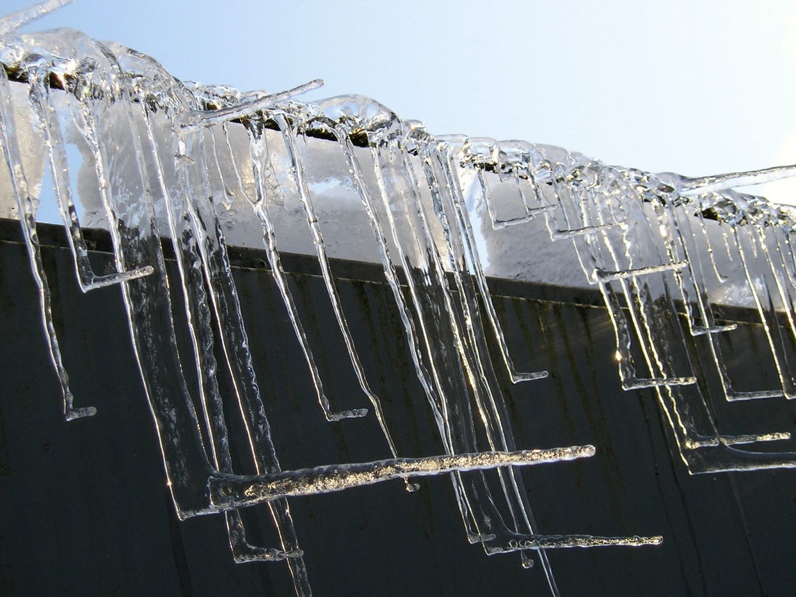 Right-angled Icicles at Glenmore Campsite
