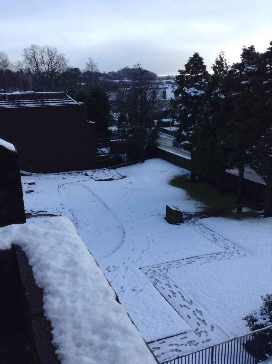 Snow 16th January 2015