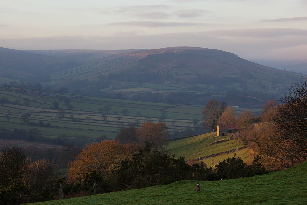 Lower Farndale, winter light