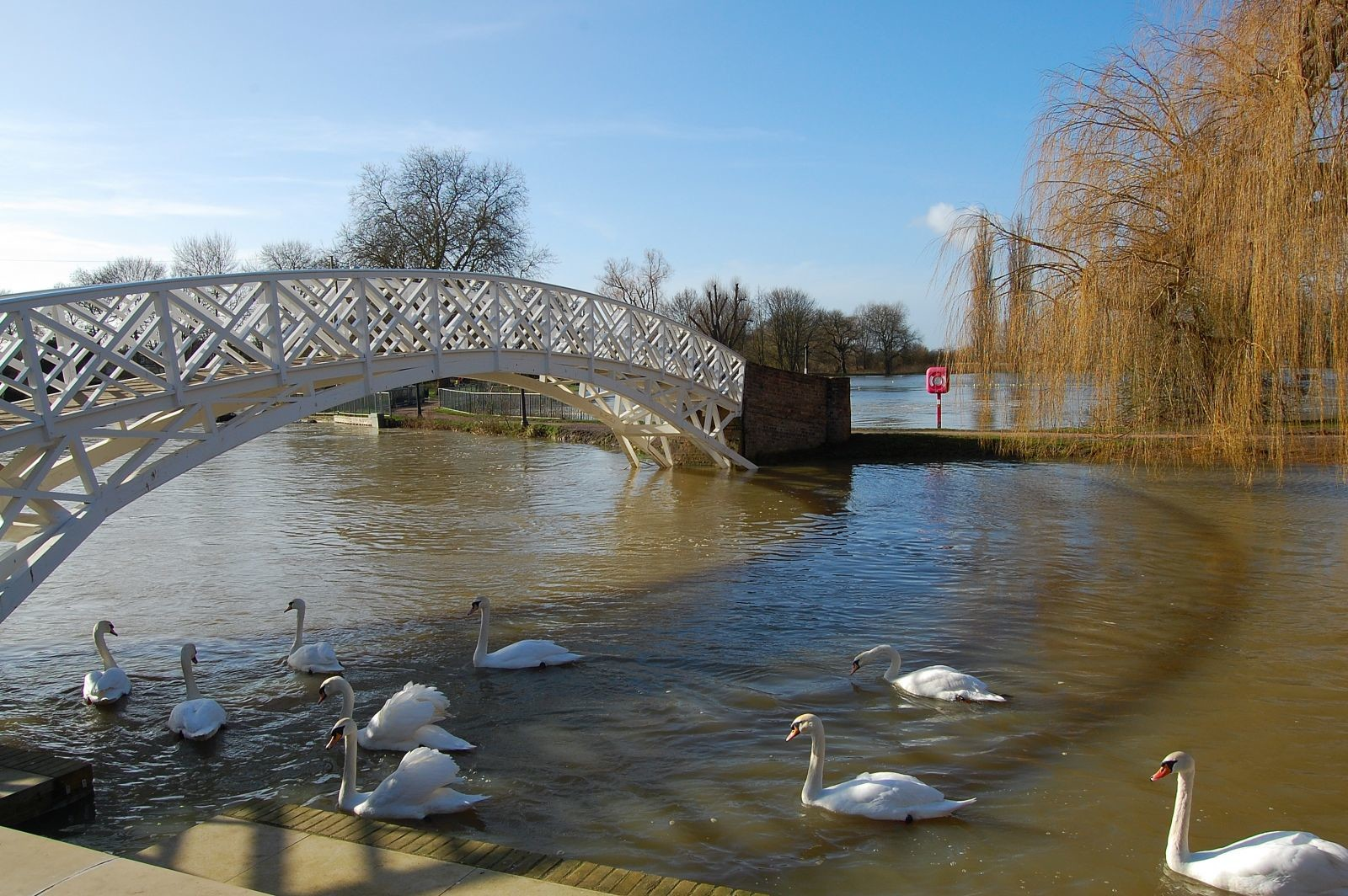 Great Ouse in flood with Chinese Bridge.