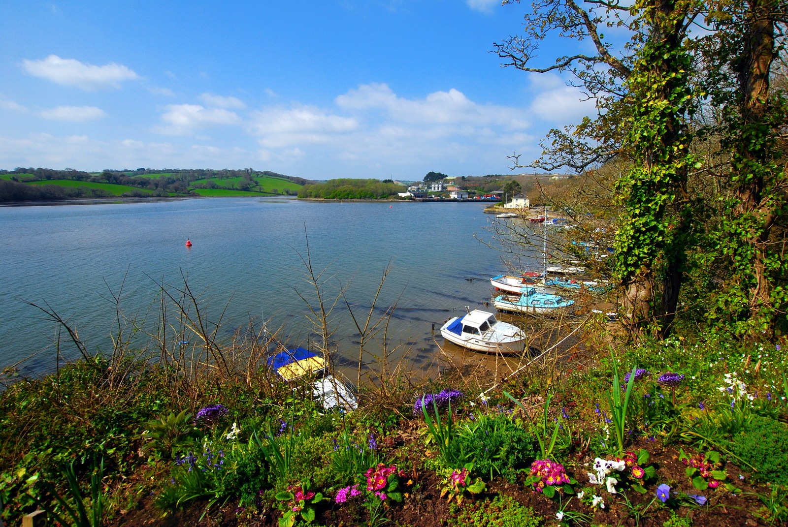 Truro River in the Spring